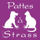 PATTES A STRASS