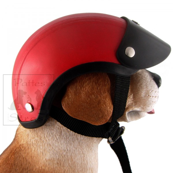 casque de moto pour chien casque moto chien sur. Black Bedroom Furniture Sets. Home Design Ideas