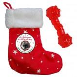 Botte surprise de Noël pour chien